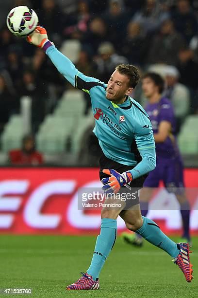 Norberto Murara Neto of ACF Fiorentina throws the ball during the Serie A match between Juventus FC and ACF Fiorentina at Juventus Arena on April 29...