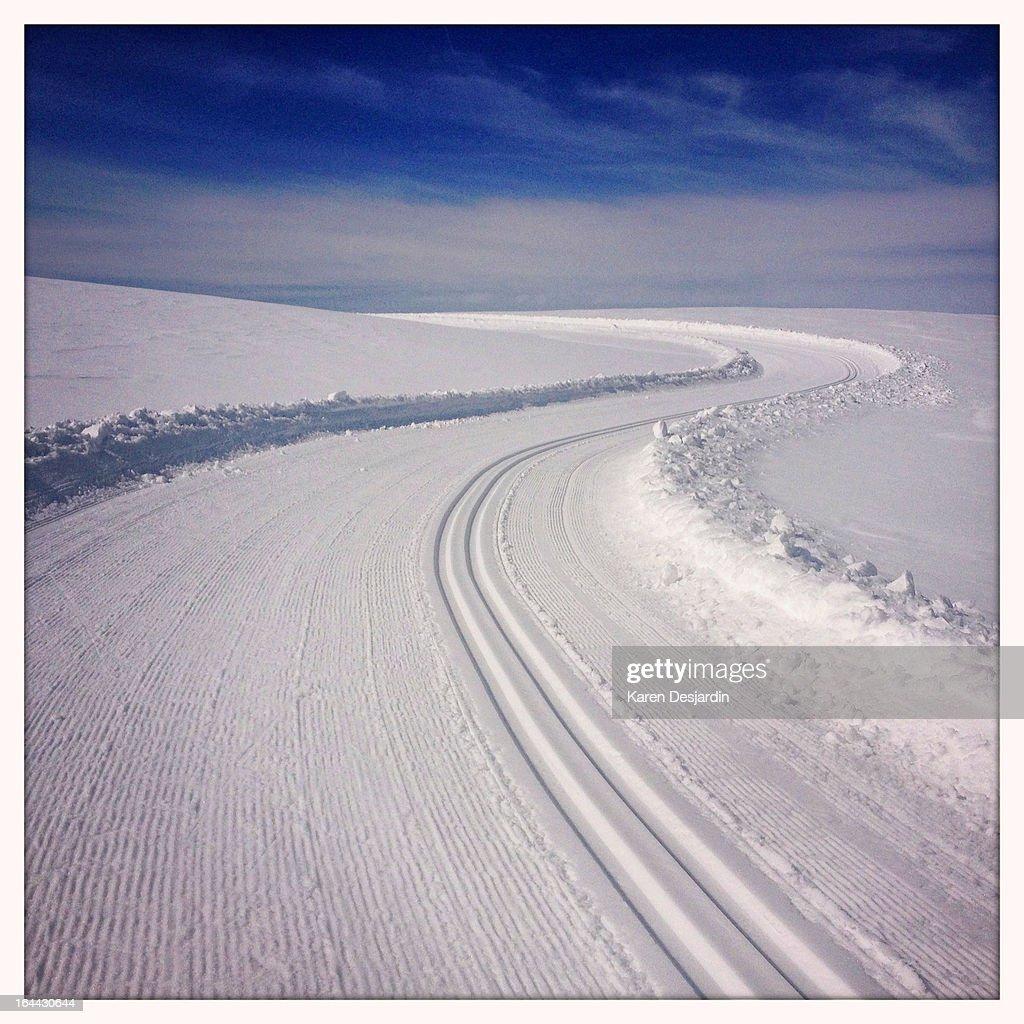 Nordic ski tracks in the snow, Colorado