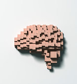 Normal brain made of wooden blocks