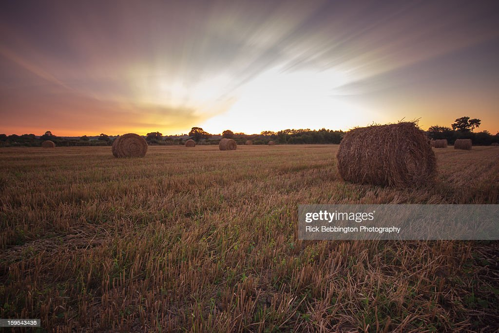 Normandy Fields Exciting Sky : Stock Photo