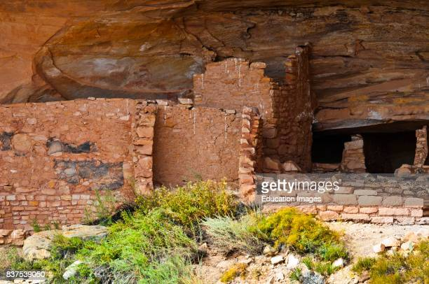 North America USA Utah Butler Wash Anasazi Ruins Bears Ears National Monument
