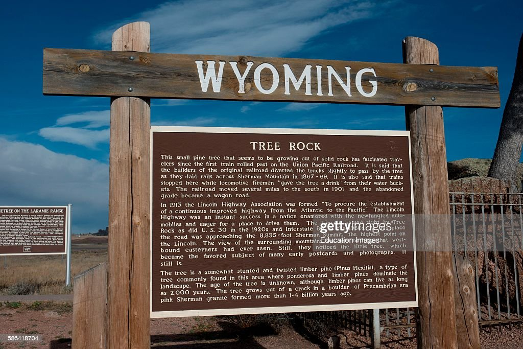 North America USA Wyoming Buford Informational Sign about Lonetree and Tree Rock a twisted Limber Pine growing from a crack in a Boulder of Pink...