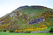The North Berwick Law in North Berwick, Scotland. The hill stand 614 feet above the town of North Berwick.