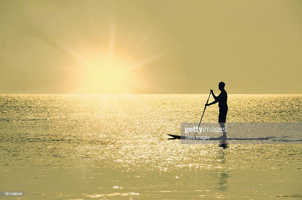 USA, North Carolina, Nags Head, Man standing on paddle board at sunset : Stock Photo