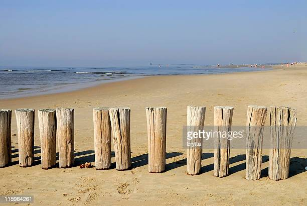 North Sea beach  with wooden breakwater in Zeeland, the Netherlands