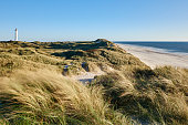 North sea coast with dune and a lighthouse in the background