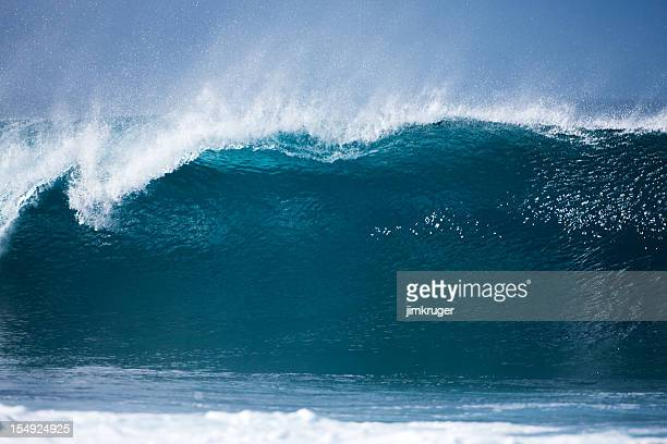 North shore banzai pipeline wave, Oahu, Hawaii.