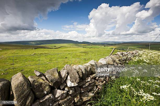 North Yorkshire Countryside
