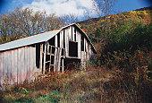 USA, northern Georgia, dilapidated barn, autumn