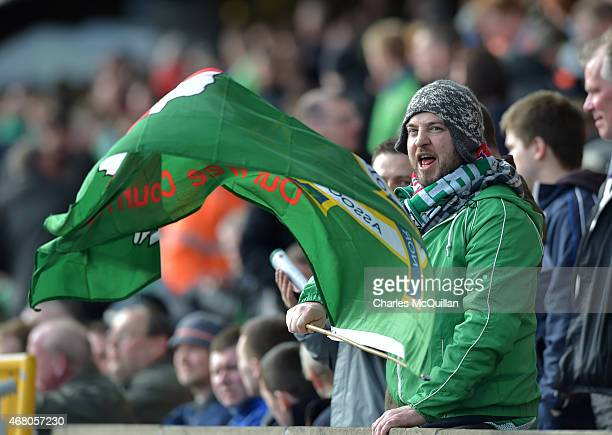 Northern Ireland fans during the EURO 2016 Group F qualifier at Windsor Park on March 29 2015 in Belfast Northern Ireland