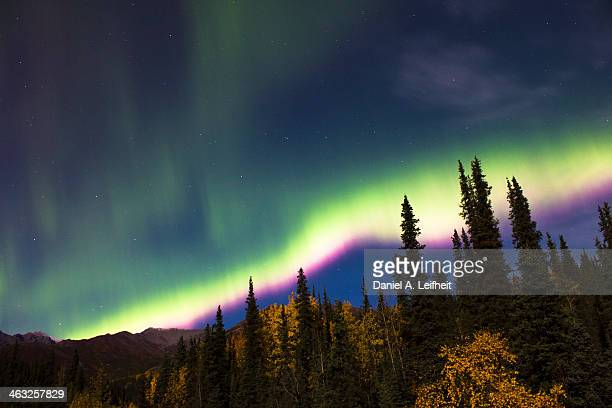 Northern Lights and the Big Dipper Over Denali