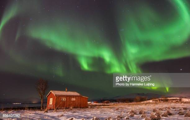 Northern Lights & Cabin
