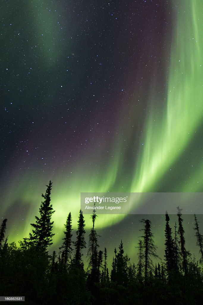 CONTENT] Northern lights (aurora borealis) dancing above the sky in Canada's Northwest Territories.