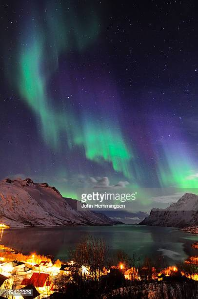 Northern Lights in Ersfjordbotn