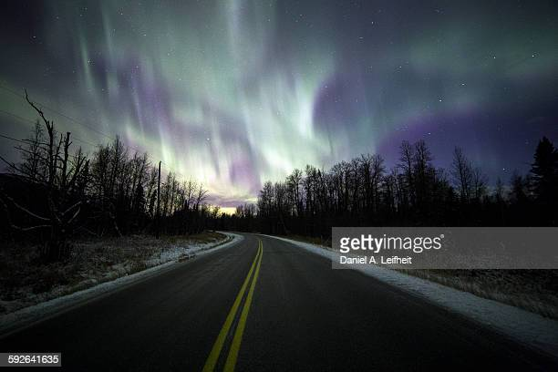 Northern lights over road