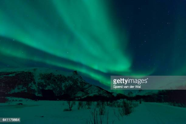 Northern Lights, polar light or Aurora Borealis in the night sky