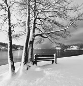 A park bench overlooks Halifax's Northwest Arm covered in fresh snow.  Long exposure.