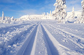 Dreamlike cross-country ski trail in Norefjell in January
