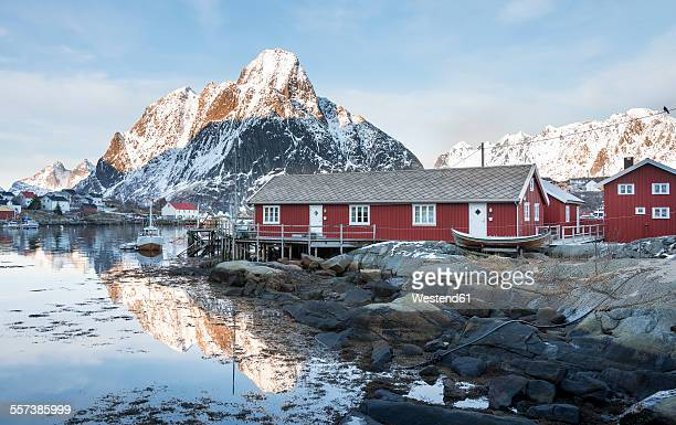 Norway, Lofoten, Reine, view to harbour at sunrise
