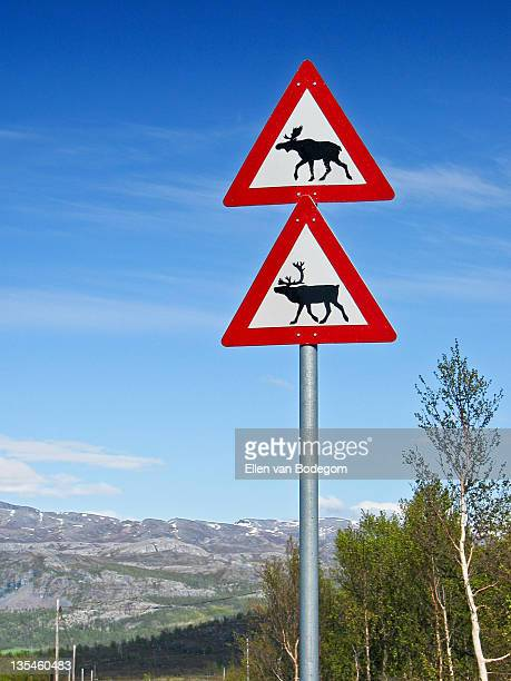 Norway road sign