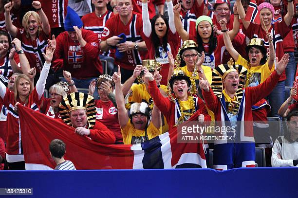 Norway's fans cheer their team during the 2012 EHF European Women's Handball Championship final match Norway vs Montenegro on December 16 at the...