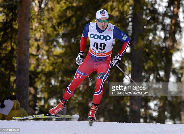 Norway's Finn Haagen Krogh competes to win the men's 15 km freestyle Crosscountry Skiing World Cup in Ostersund Sweden on February 15 2015 AFP PHOTO...