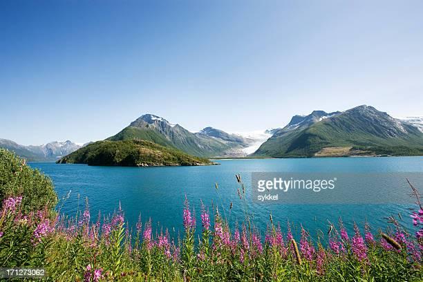 fjord norvégien
