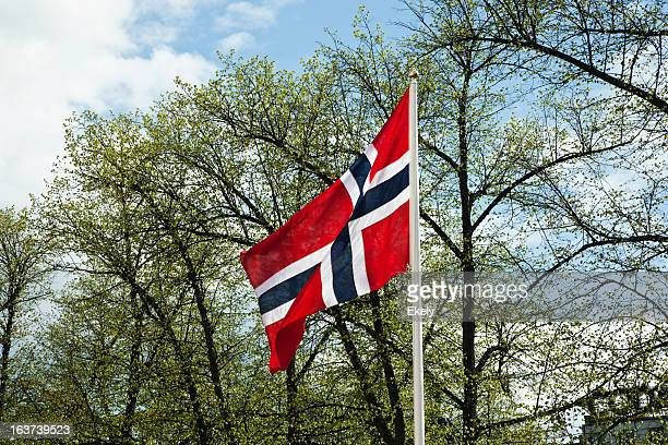 Norwegian flag  against  green trees and sky in spring