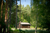Norwegian Wooden Log Cabin House in the Forest