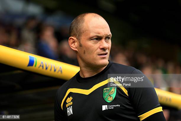 Norwich City Manager Alex Neil during the Sky Bet Championship match between Norwich City and Rotherham United at Carrow Road on October 15 2016 in...