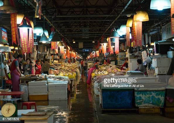 Wholesale fish market stock photos and pictures getty images for Wholesale fish market