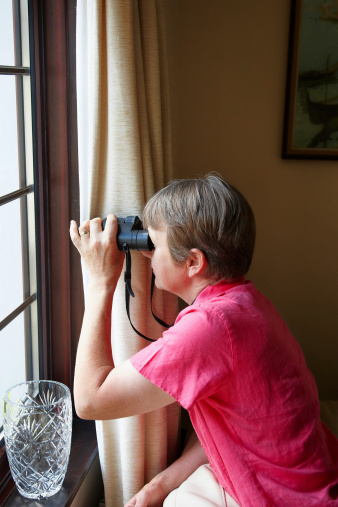 Nosy Stock Photos And Pictures Getty Images