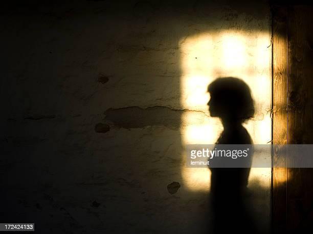 Nostalgic shadow