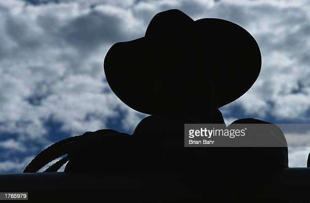 Man wearing cowboy hat silhouette rear view