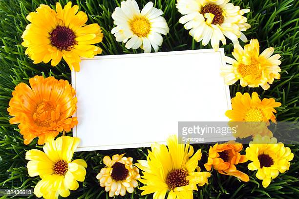 Note card with spring flowers