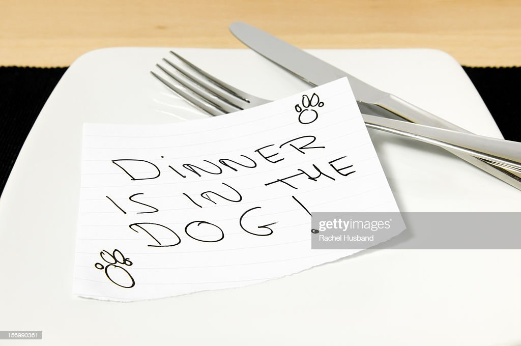 Note saying 'Dinner is in the dog' on a plate : Stock Photo