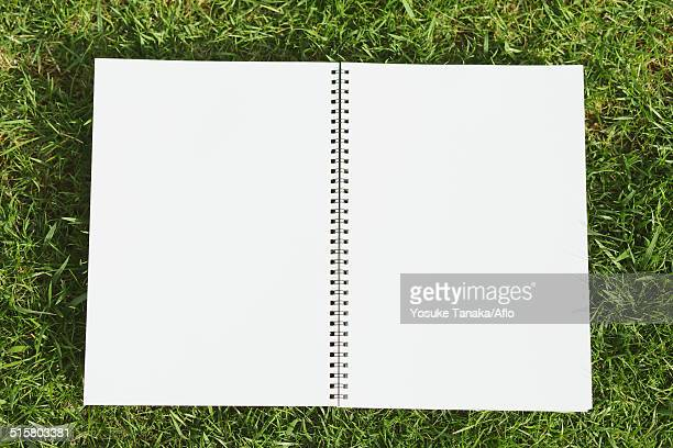 Notebook on grass