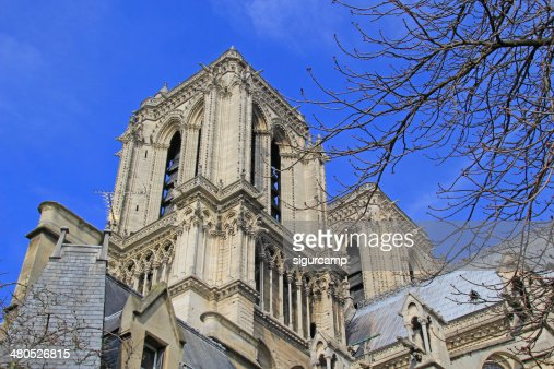 Notre dame Cathedral in Paris. : Stock Photo