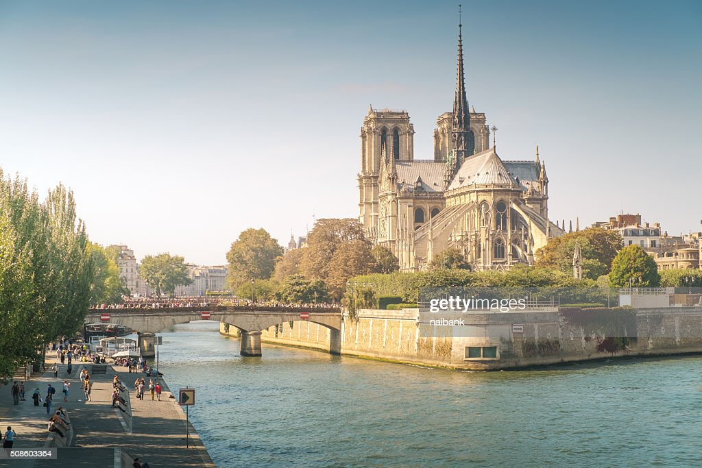 Notre dame de Paris at sunset : Foto de stock
