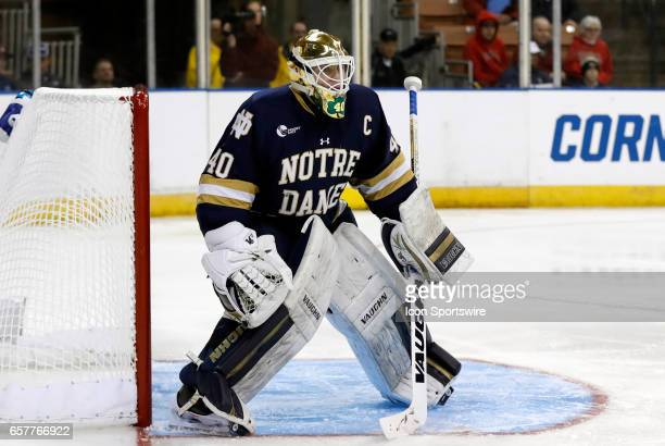 Notre Dame Fighting Irish goaltender Cal Petersen gets set in goal during an NCAA Northeast Regional semifinal between the University of Minnesota...