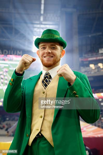 Leprechaun Stock Photos and Pictures | Getty Images