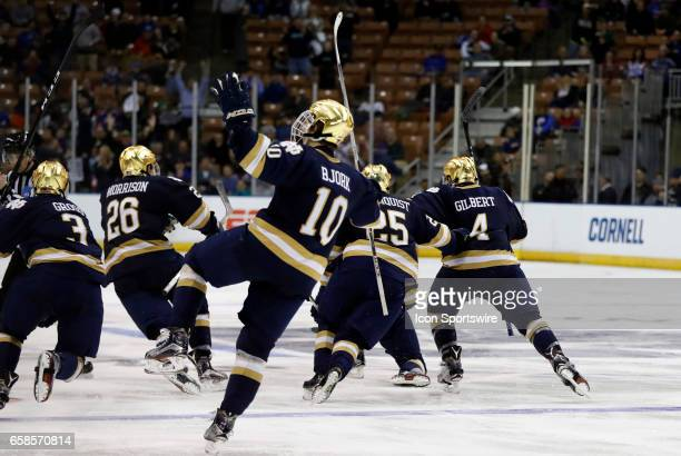 Notre Dame Fighting Irish right wing Anders Bjork and teammates celebrate the overtime win during the NCAA Northeast Regional final between the UMass...
