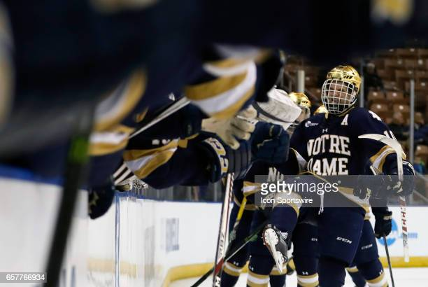 Notre Dame Fighting Irish right wing Anders Bjork skates by the bench after tying the game 22 during an NCAA Northeast Regional semifinal between the...