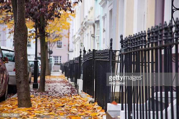 Notting Hill street with pastel colors and leafs