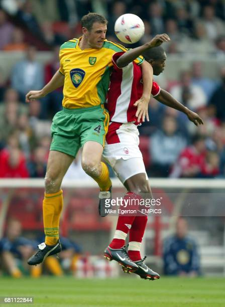 Nottingham Fores's Marlon Harewood and Norwich City's Malky Mackay