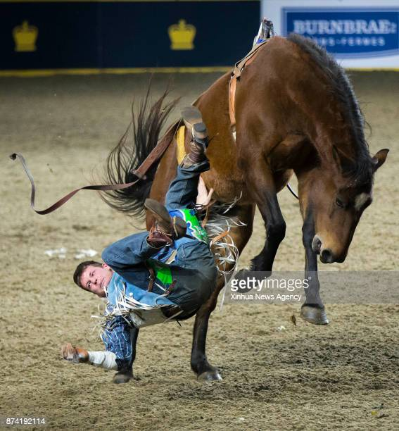Cowboy Andy Shold of Canada falls from his horse during the Bareback competition of the Rodeo section at the 2017 Royal Horse Show in Toronto Canada...