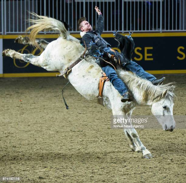 Cowboy Brett Williams of Canada competes during the Bareback competition of the Rodeo section at the 2017 Royal Horse Show in Toronto Canada Nov 12...