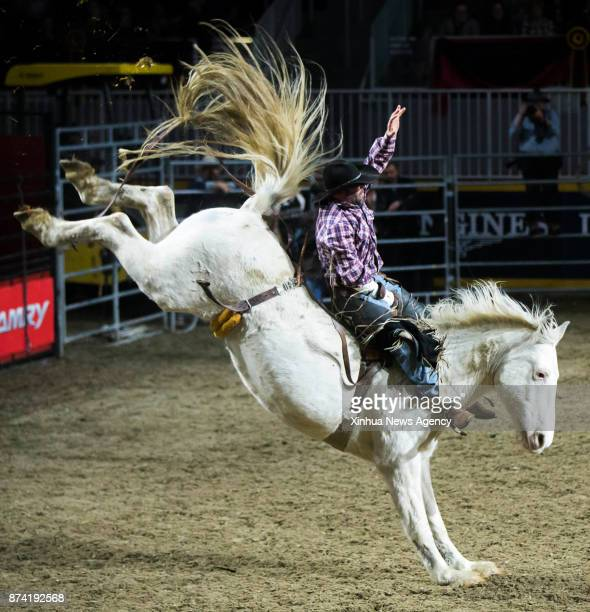 Cowboy Joe Courville of the United States competes during the Bareback competition of the Rodeo section at the 2017 Royal Horse Show in Toronto...