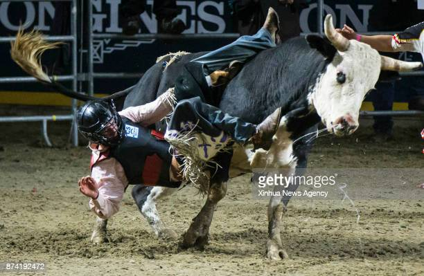 Cowboy Ron Hunt of Canada falls from his bull during the Bull Riding competition of the Rodeo section at the 2017 Royal Horse Show in Toronto Canada...