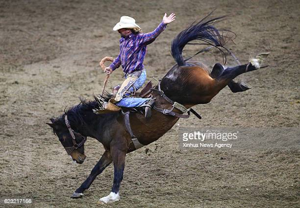 TORONTO Nov 14 2016 Cowboy Peter Hallman of Canada competes during the Rodeo section of the 2016 Royal Horse Show in Toronto Canada Nov 13 2016 Over...